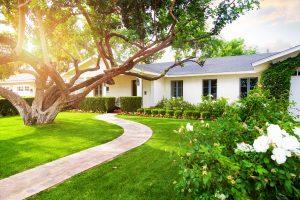 Beautiful Home With Green Grass Yard